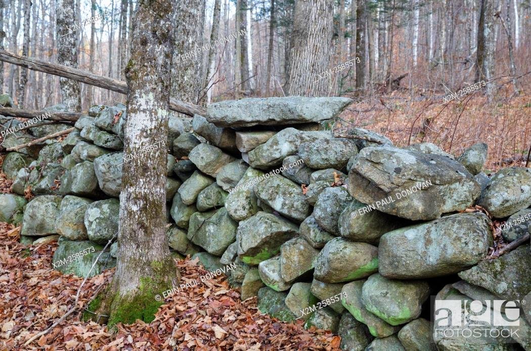 Stock Photo: Stone wall at the abandoned Gilbert P. Wright homestead along the old East Road in Benton, New Hampshire USA. This road is located off the North and South Road.