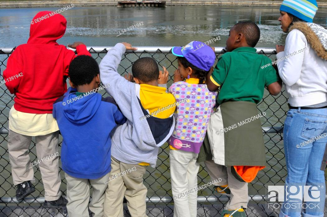 Stock Photo: School Children Visiting TECO Manatee Viewing Center Riverview Florida.