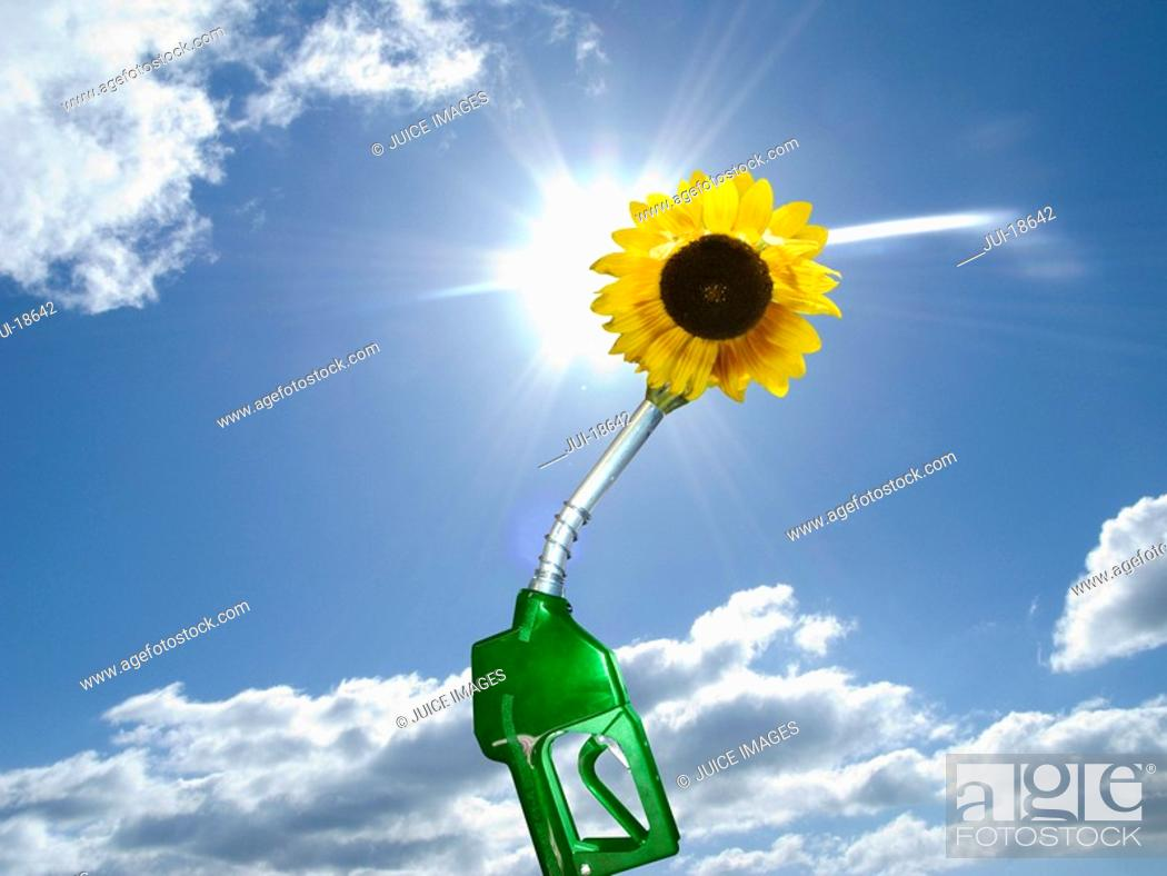 Stock Photo: Green gas pump with sunflower at end of nozzle.