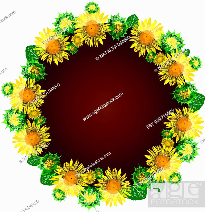 Stock Vector: round wreath of yellow blossoming sunflowers, inside empty space, flowers are isolated on white background.