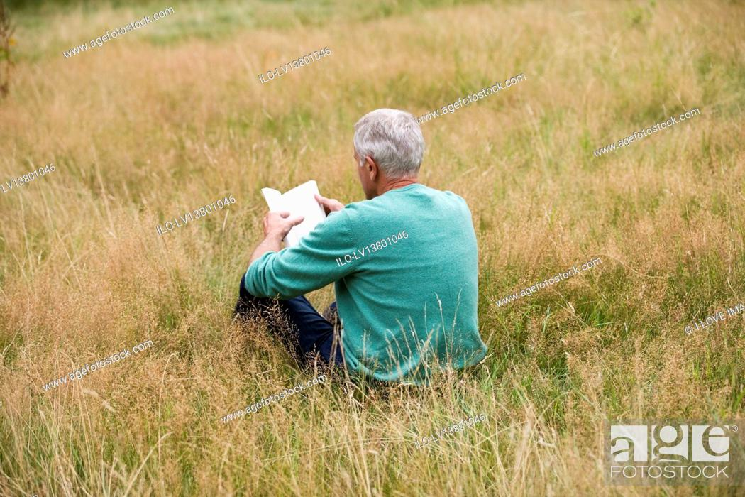 Stock Photo: A senior man sitting on the grass, reading a book, rear view.