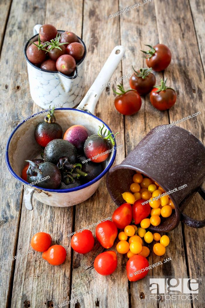 Photo de stock: Old tomato varieties in containers.