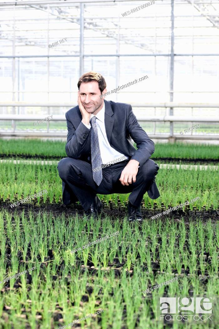 Stock Photo: Germany, Bavaria, Munich, Mature man in greenhouse between seedlings.