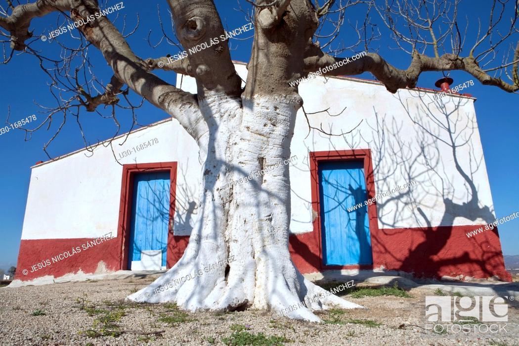 Stock Photo: Tipic house  Delta del Ebro Natural Park, in Tarragona province  Catalonia  Spain.
