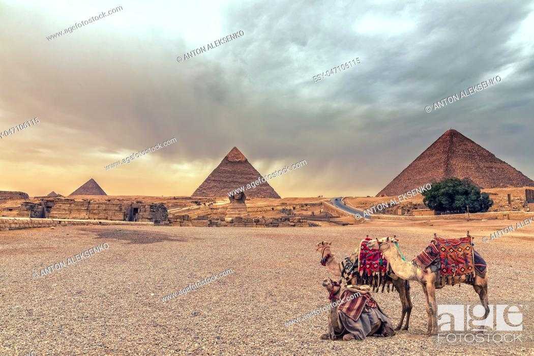 Imagen: Complex of Giza Pyramids and the Sphinx in the desert with camels, Egypt.