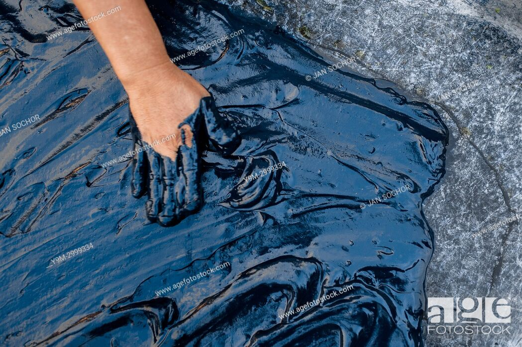 Stock Photo: A Salvadoran farm worker spreads out the indigo paste onto a metal sheet table to dry in the sun at the semi-industrial manufacture near San Miguel, El Salvador.