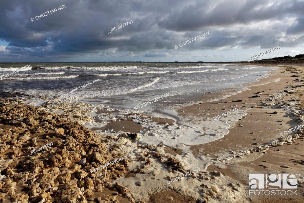 Stock Photo: Beach, Ile d'Oleron, Charente Maritime, Puy-de-Dome, Auvergne, France.