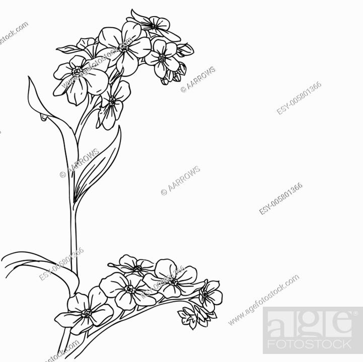 Stock Vector: tender twig blossoming orchids on a light background.
