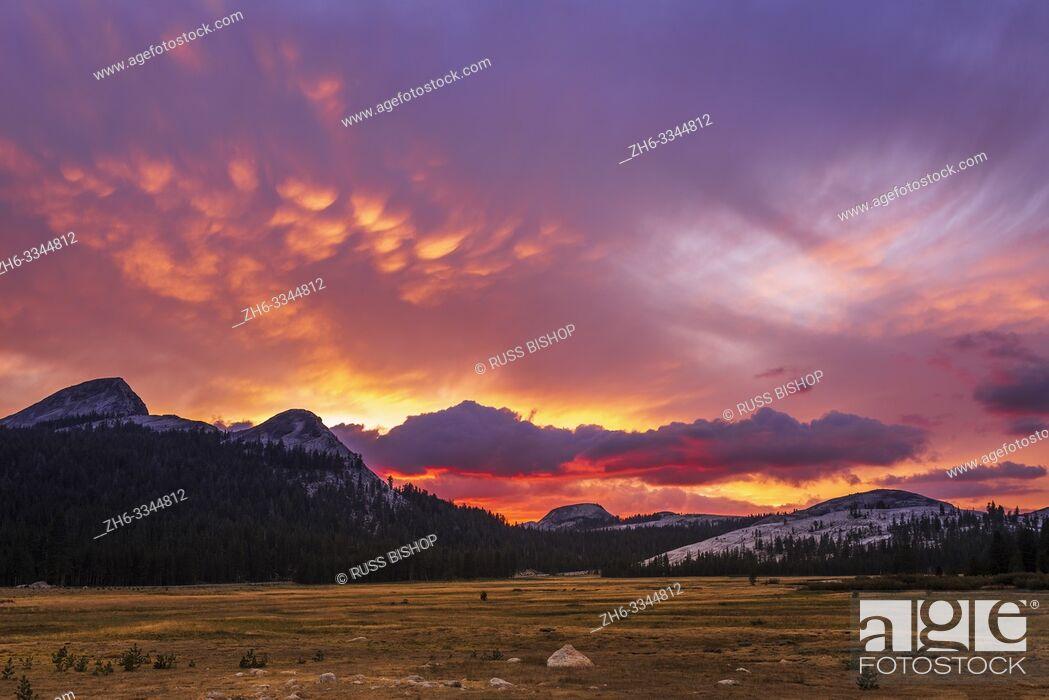 Stock Photo: Sunset over Tuolumne Meadows, Yosemite National Park, California USA.