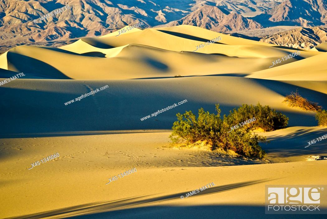 Stock Photo: Sunset casts shadows across undulating sand dunes in Death Valley, California.