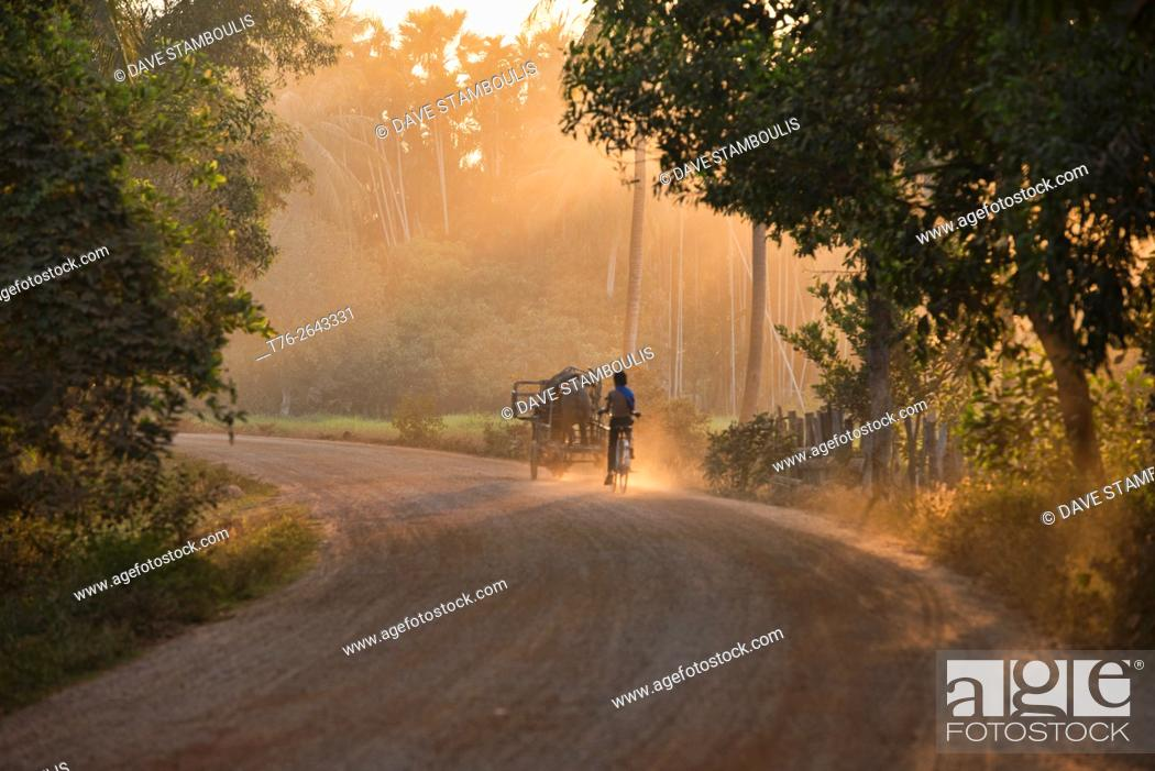 Stock Photo: Riding home in the dust at sunset near Siem Reap, Cambodia.