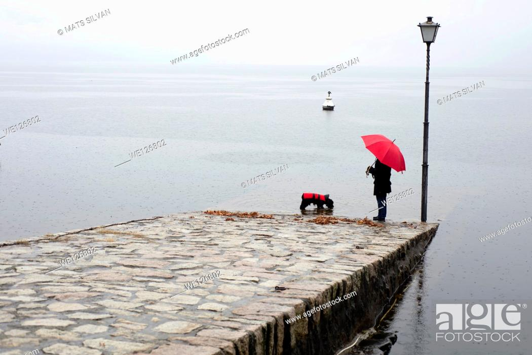 Stock Photo: Woman and a dog with umbrella and raincoat standing on a pier in ascona ticino switzerland.