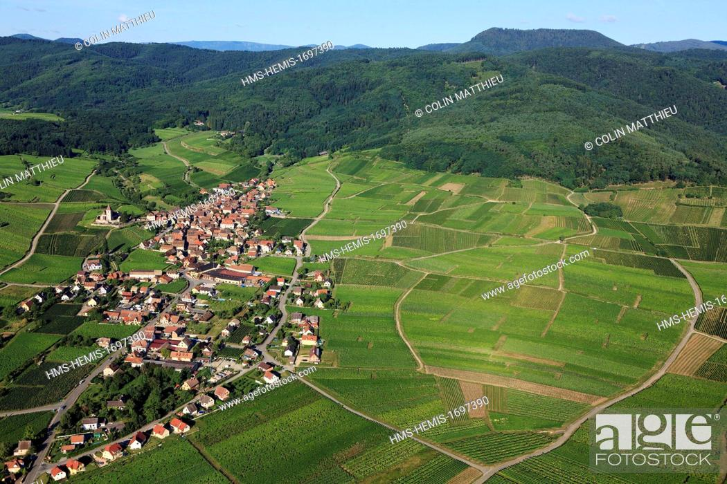 Stock Photo: France, Haut Rhin, Alsace wine road, Hunawihr, labelled Les Plus Beaux Villages de France (The Most Beautiful Villages of France).