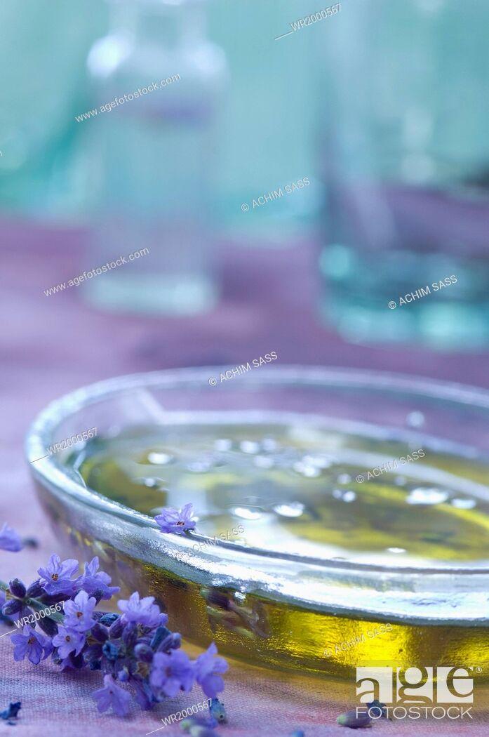 Stock Photo: lavender oil.