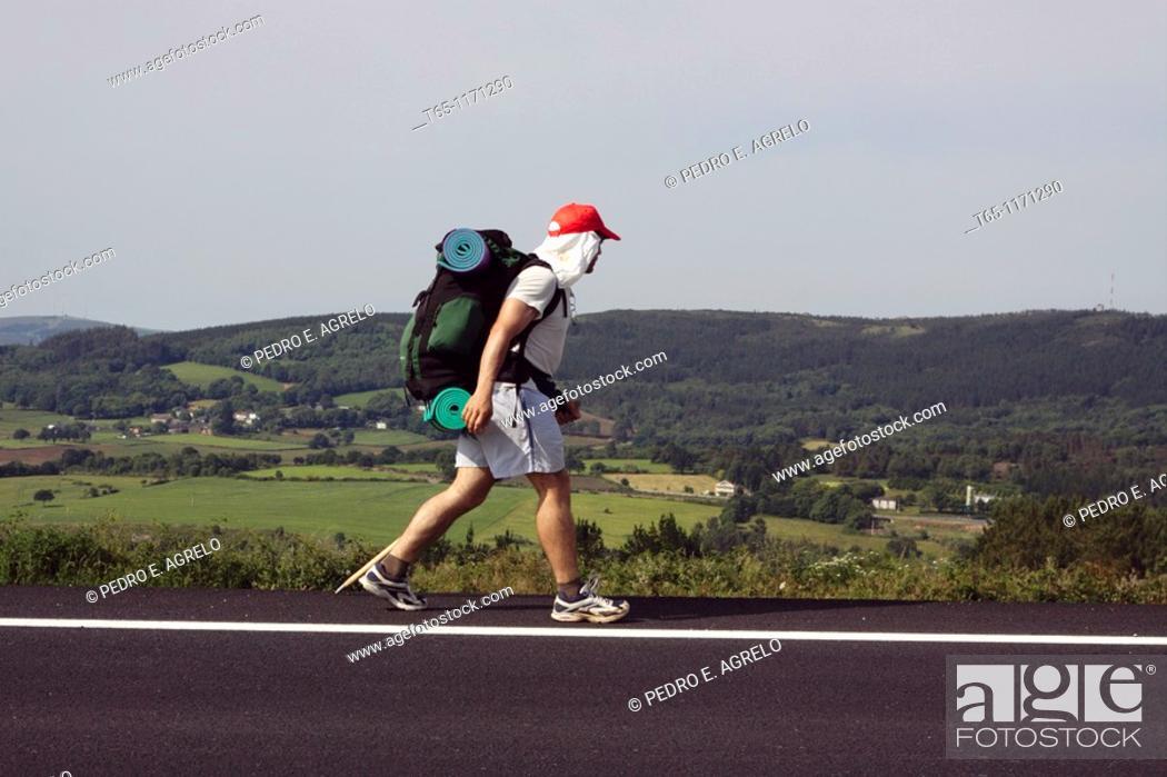 Imagen: Pilgrim. Way of St. James, French Way, near Gonzar. Province of Lugo, Galicia, Spain.