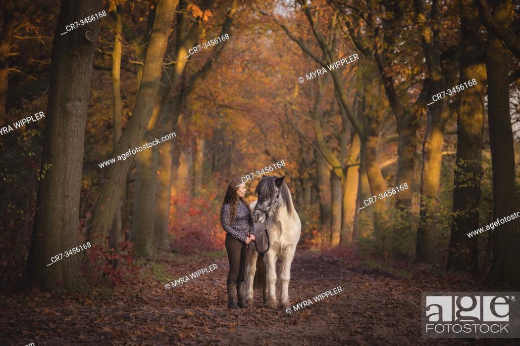 Imagen: Young woman with her icelandic horse enjoying a warm autumn day outside in Noord-Brabant, The Netherlands.