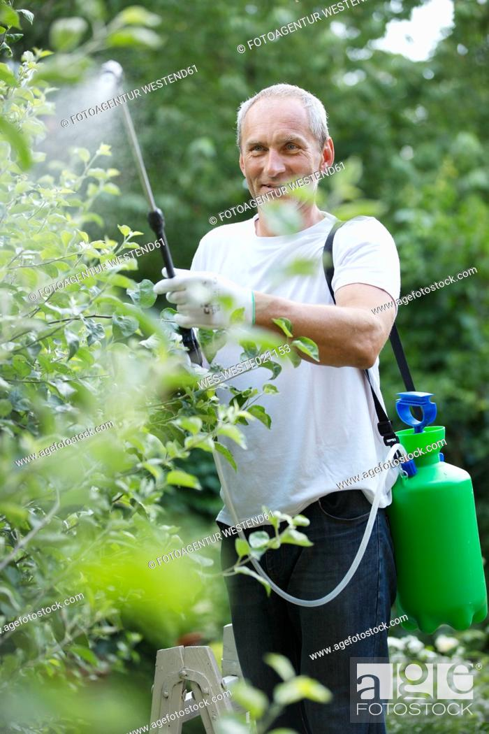 Stock Photo: Man spraying plant protection products in the garden.