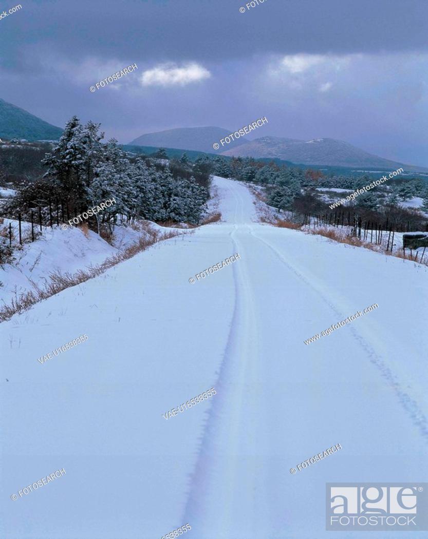 Stock Photo: scene, scenery, snow, winter, road, view, nature.