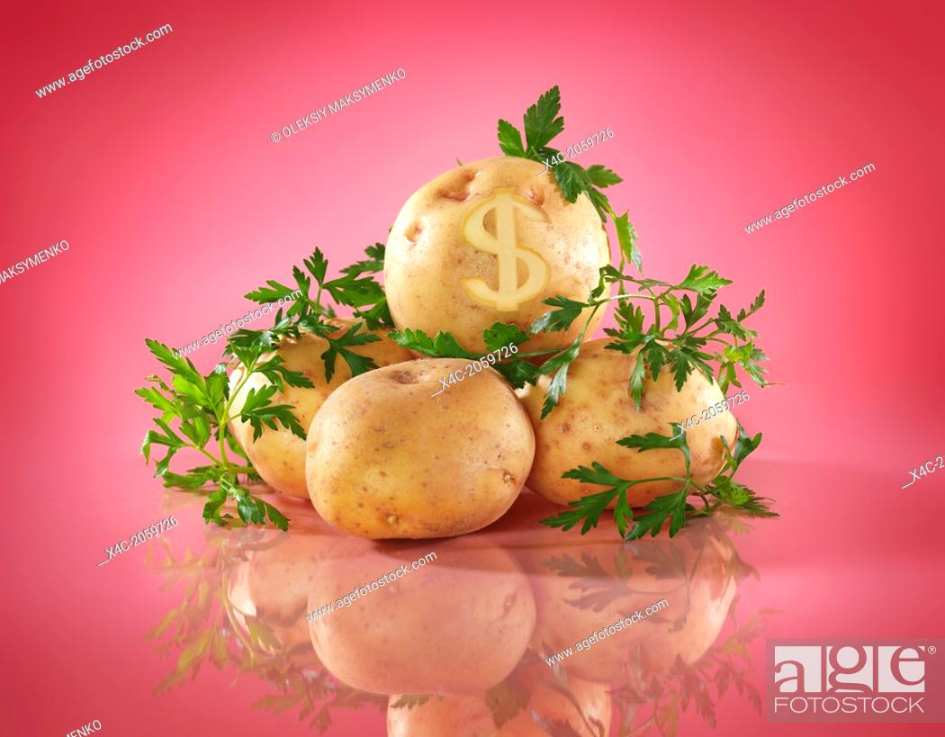Photo de stock: Conceptual food still life of potatoes with dollar symbol. Food prices concept isolated on bright pink background.