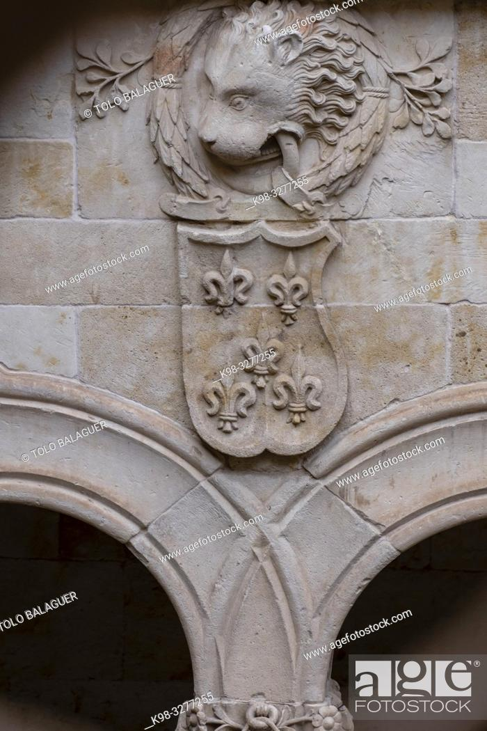Imagen: patio de la casa de las Conchas, Salamanca, comunidad autónoma de Castilla y León, Spain.