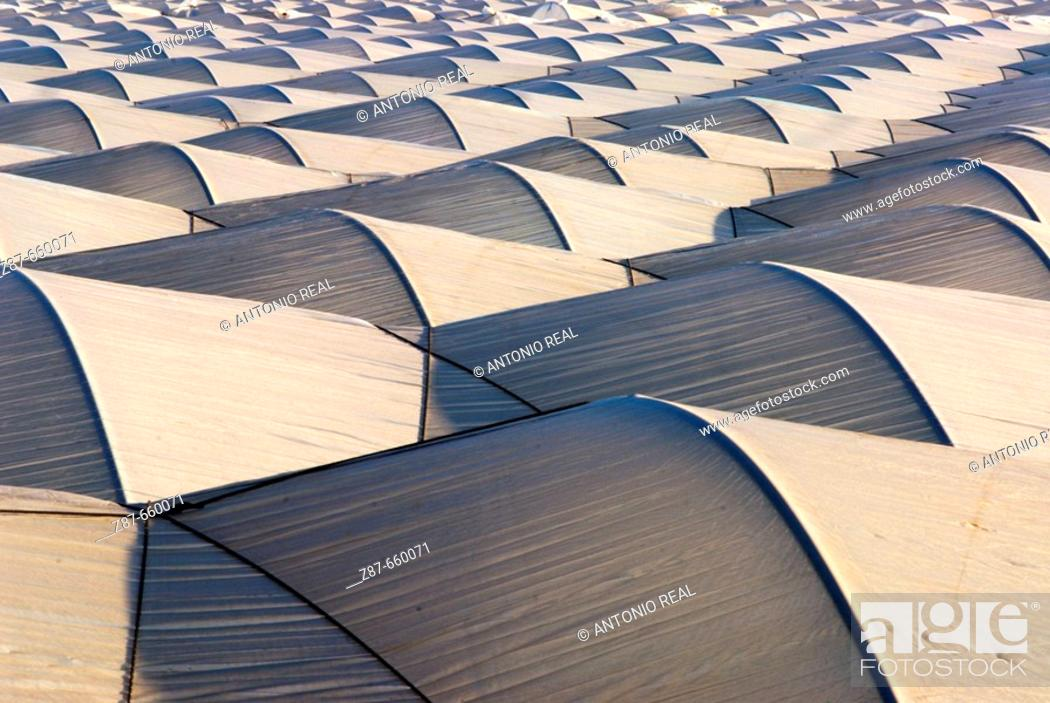 Stock Photo: Greenhouses. Almonte. Huelva. Andalusia, Spain.