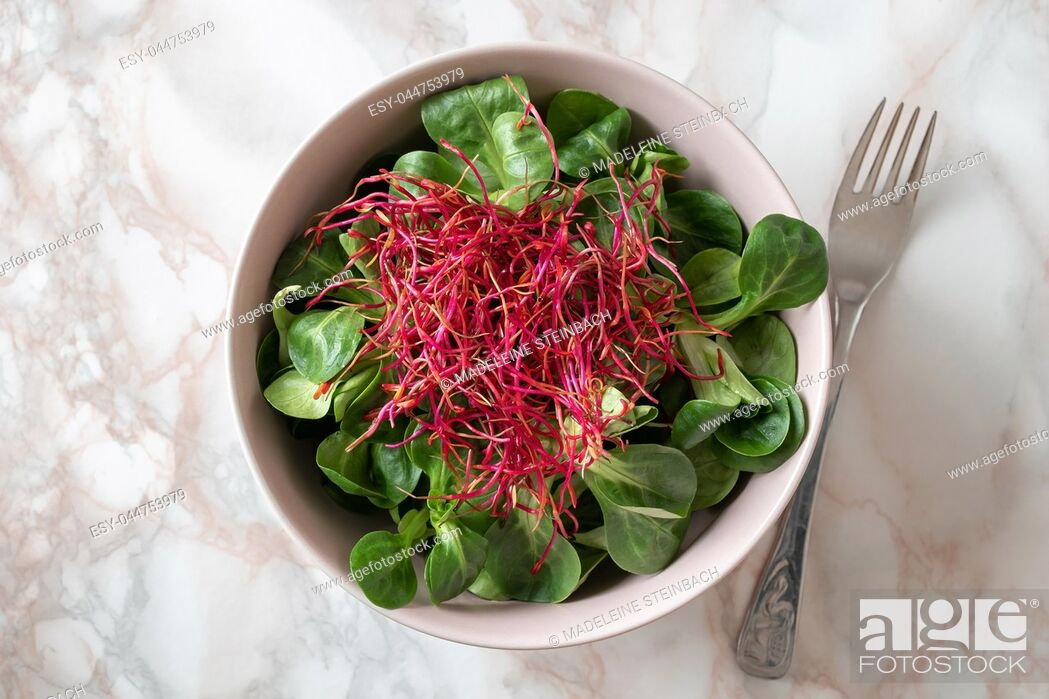 Stock Photo: Salad with lamb's lettuce and red beet sprouts, top view.