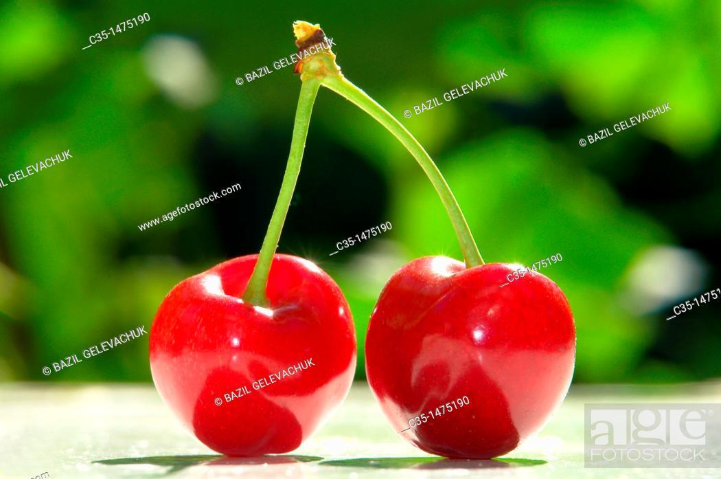 Stock Photo: Cherry.