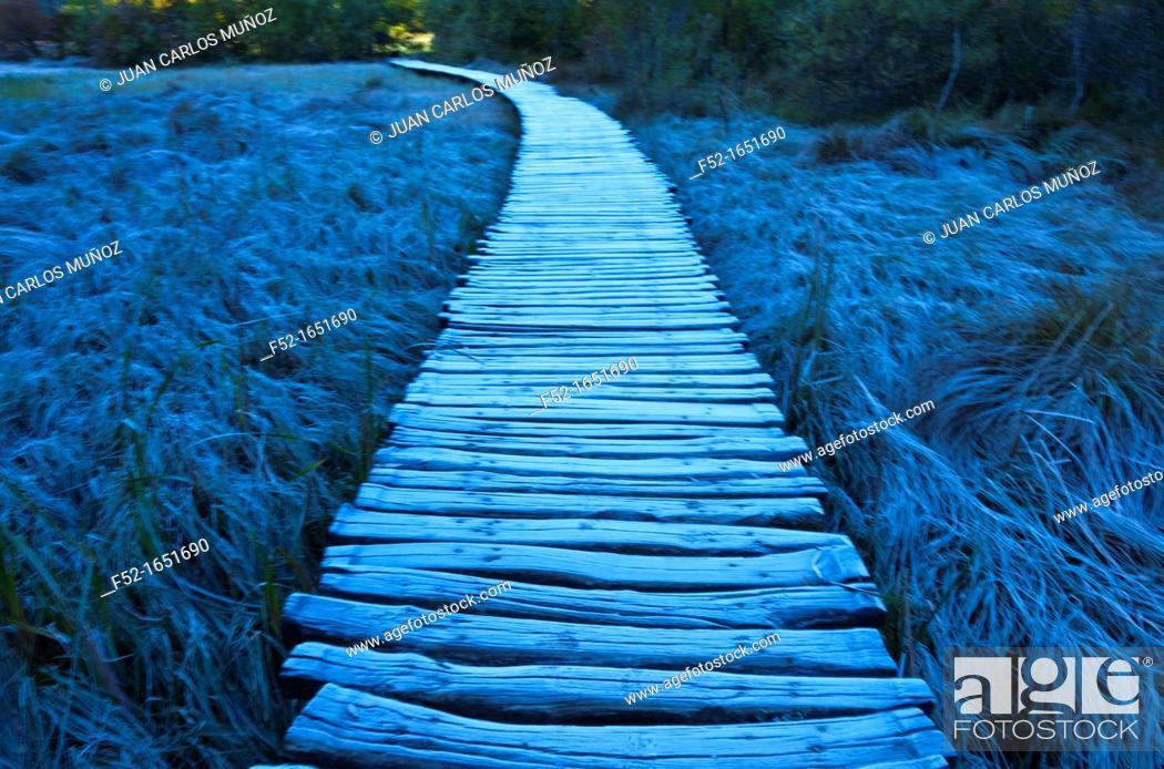 Stock Photo: Plitvice lakes National Park, Lika region, Croacia, Europe.