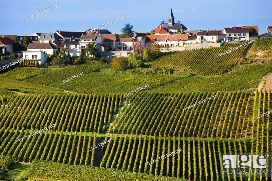 Stock Photo: France, Marne, Champagne Region, Cramant, town and vineyards, autumn.