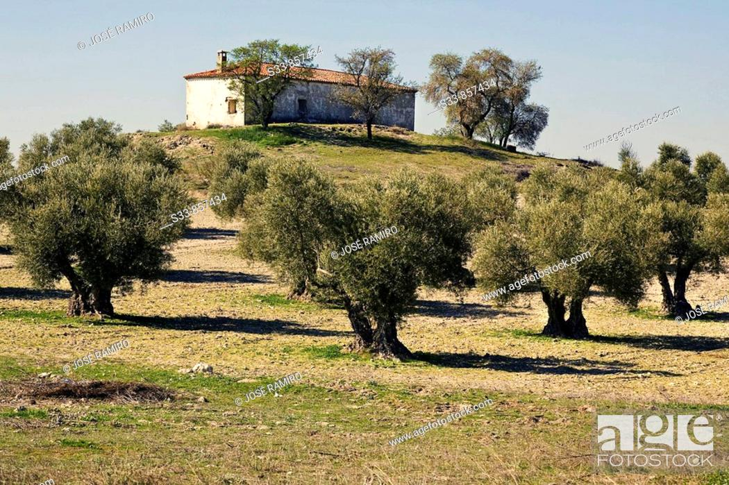 Stock Photo: La casa de Don Julián en los campos de Pinto. Madrid province. Spain.