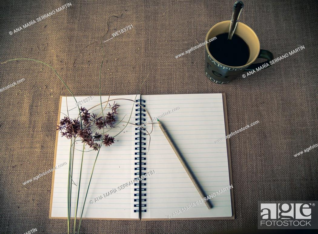Imagen: Vintage style. Organized desk with open notebook, a cup of coffee, dry grass, pencils and burlap background.