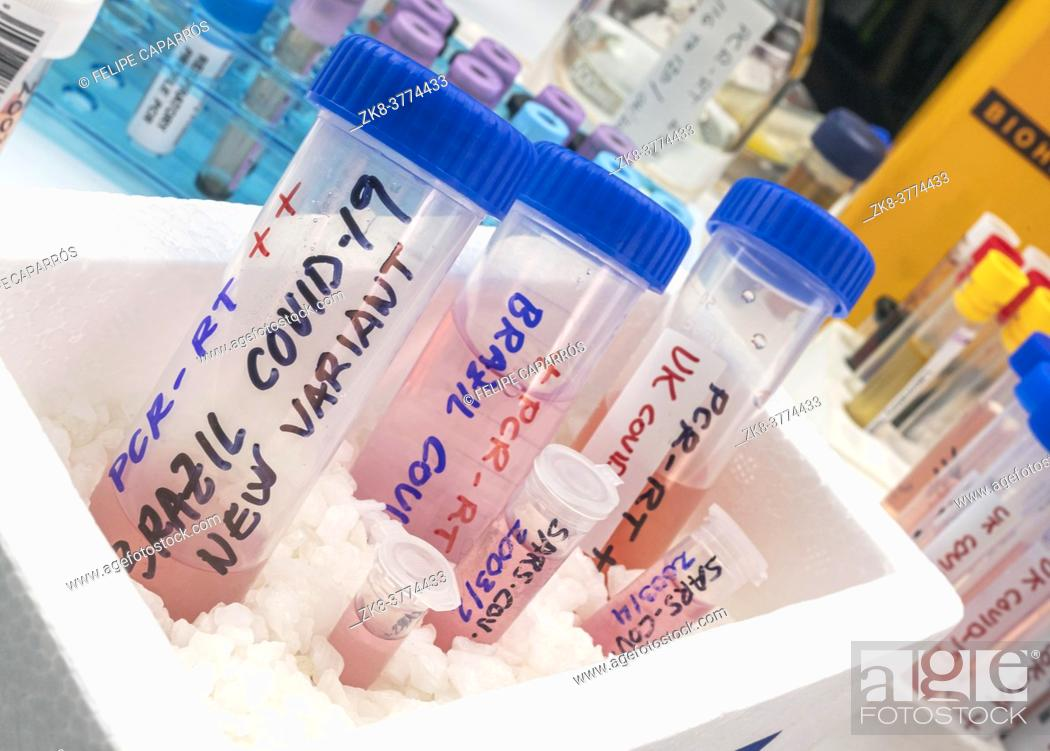 Stock Photo: Several frozen vials testing positive for covid-19 infection of the new variant in the UK and Brazil, conceptual image.