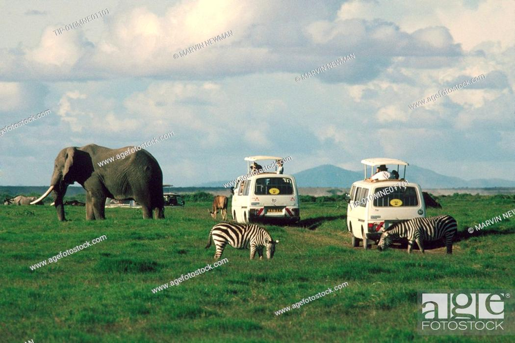 Africa, East Africa, People On Safari Looking At Elephants