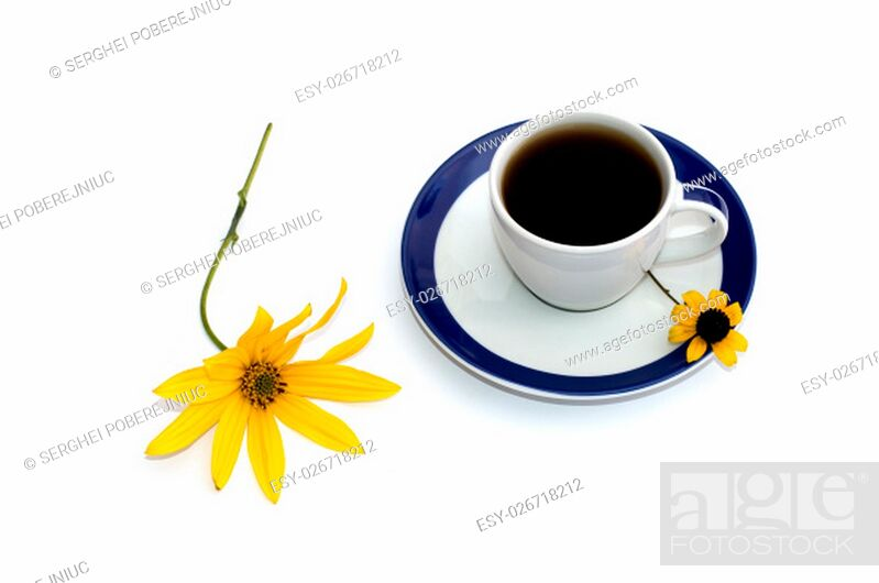 Stock Photo: the cup of coffee decorated with two yellow flowers a still life, isolate, a subject drinks and flowers.