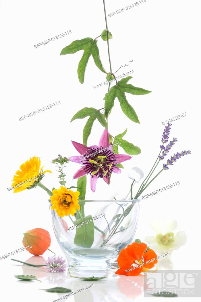 Stock Photo: Variety of flowers in mortar.