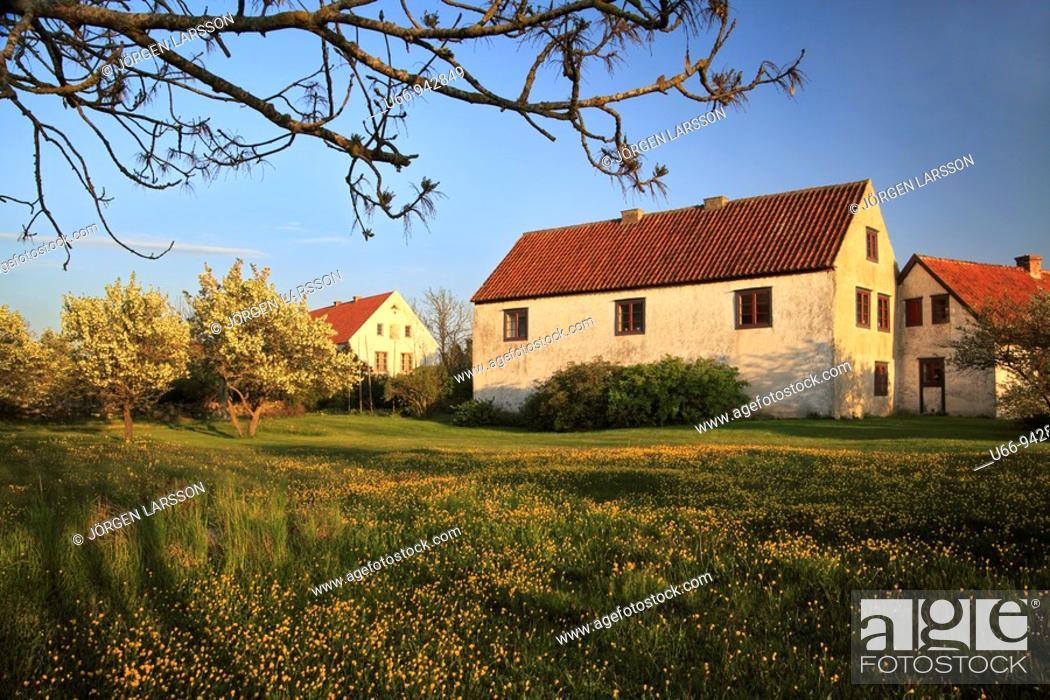 Stock Photo: Petes, Gotland, Sweden.