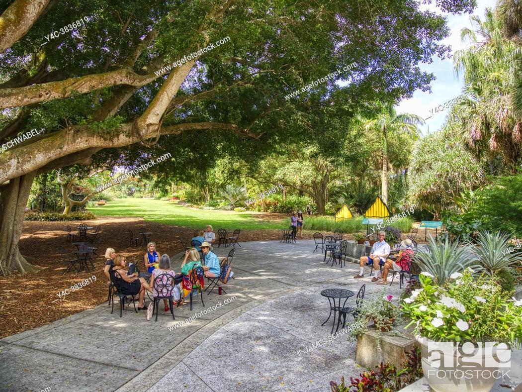 Imagen: Marie Selby Botanical Gardens in Sarasota Florida.