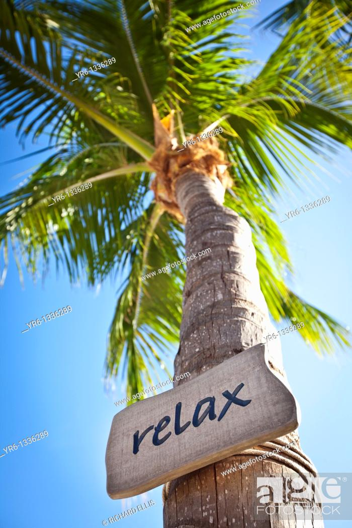 Imagen: Relax sign on coconut palms along the beach in Key West, Florida.