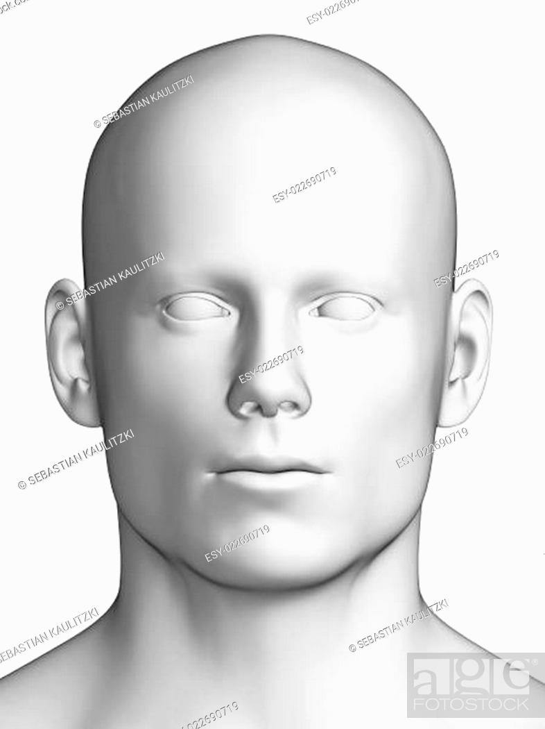 Stock Photo: 3d rendered illustration - white male head.