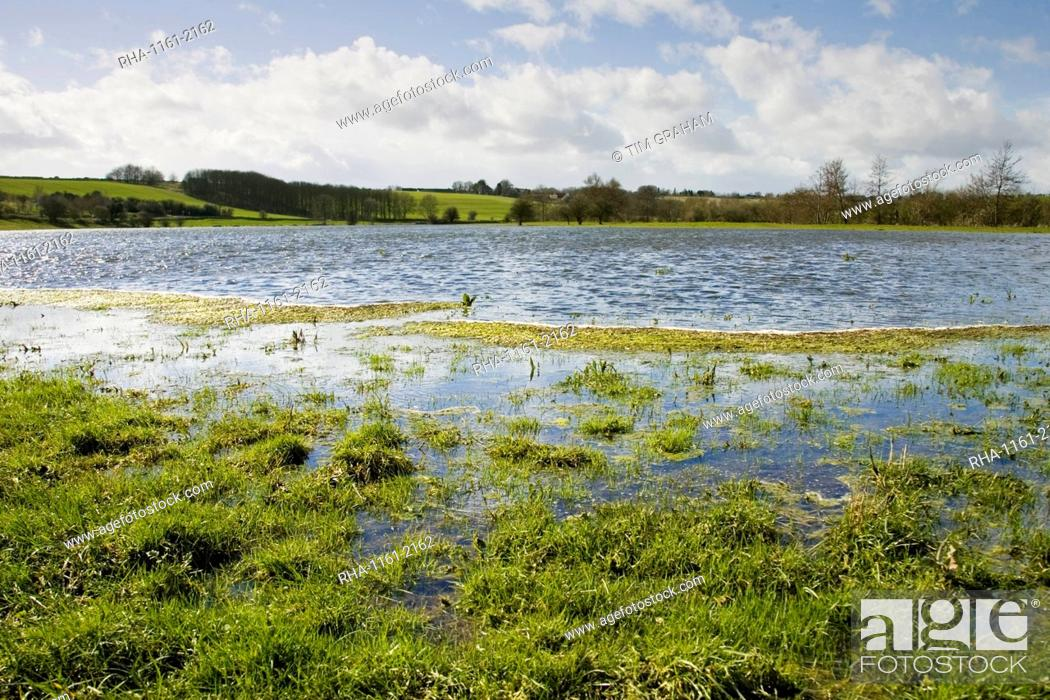 Stock Photo: Flooded watermeadows in flood plain, near Burford, Oxfordshire, The Cotwolds, England, United Kingdom.