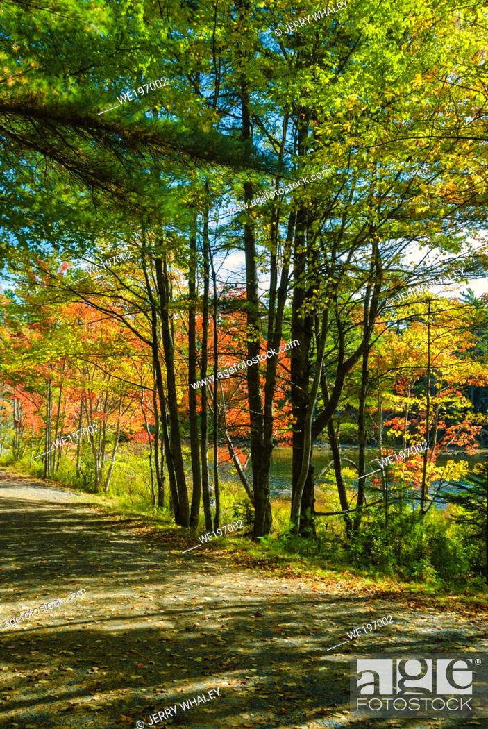 Stock Photo: Autumn View on a Carriage Roads in Acadia National Park on Mount Desert Island in Maine; USA.