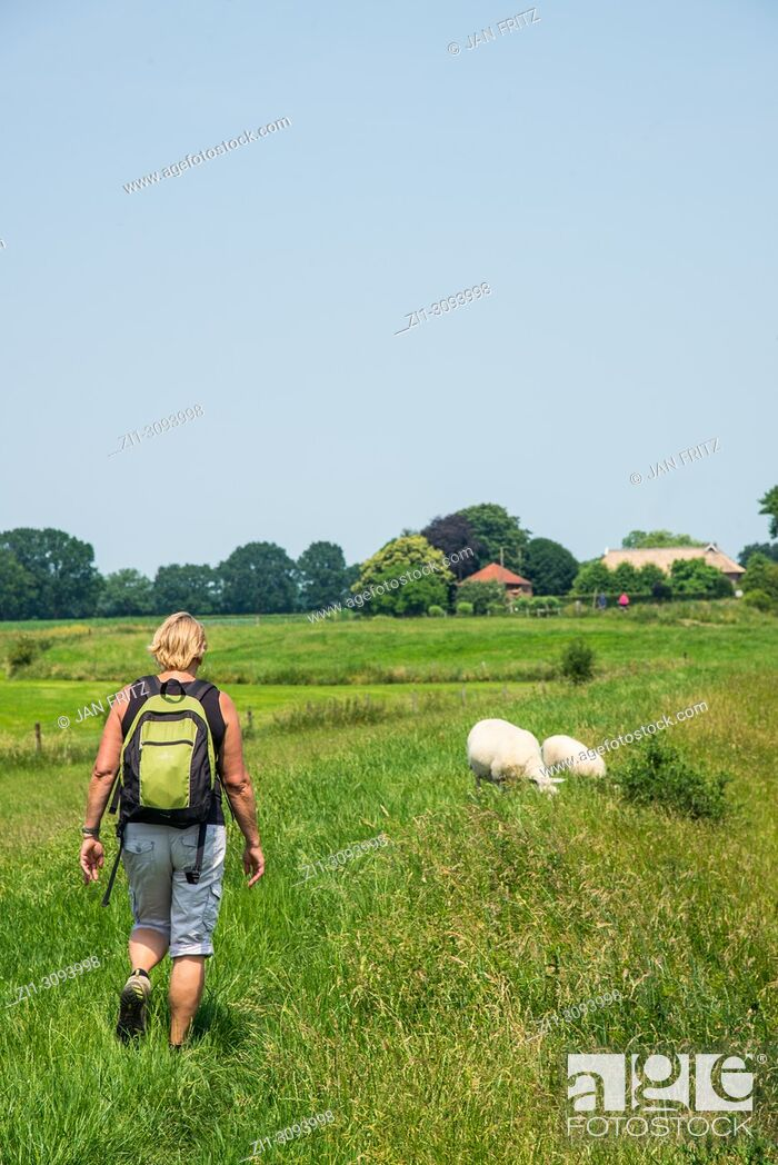 Stock Photo: woman with backpack walking through countryside in the neighbourhood of Zutphen in Gelderland, Holland.