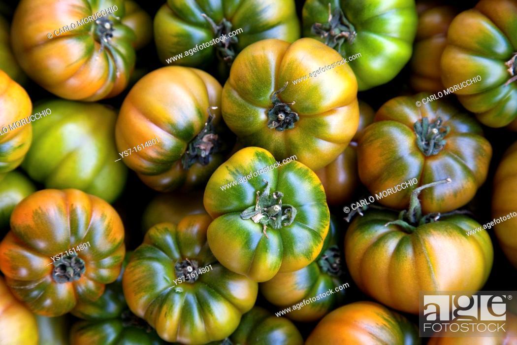 Stock Photo: Fresh tomatoes sold at the street market of Campo dei Fiori, Rome, Lazio, Italy, Europe.
