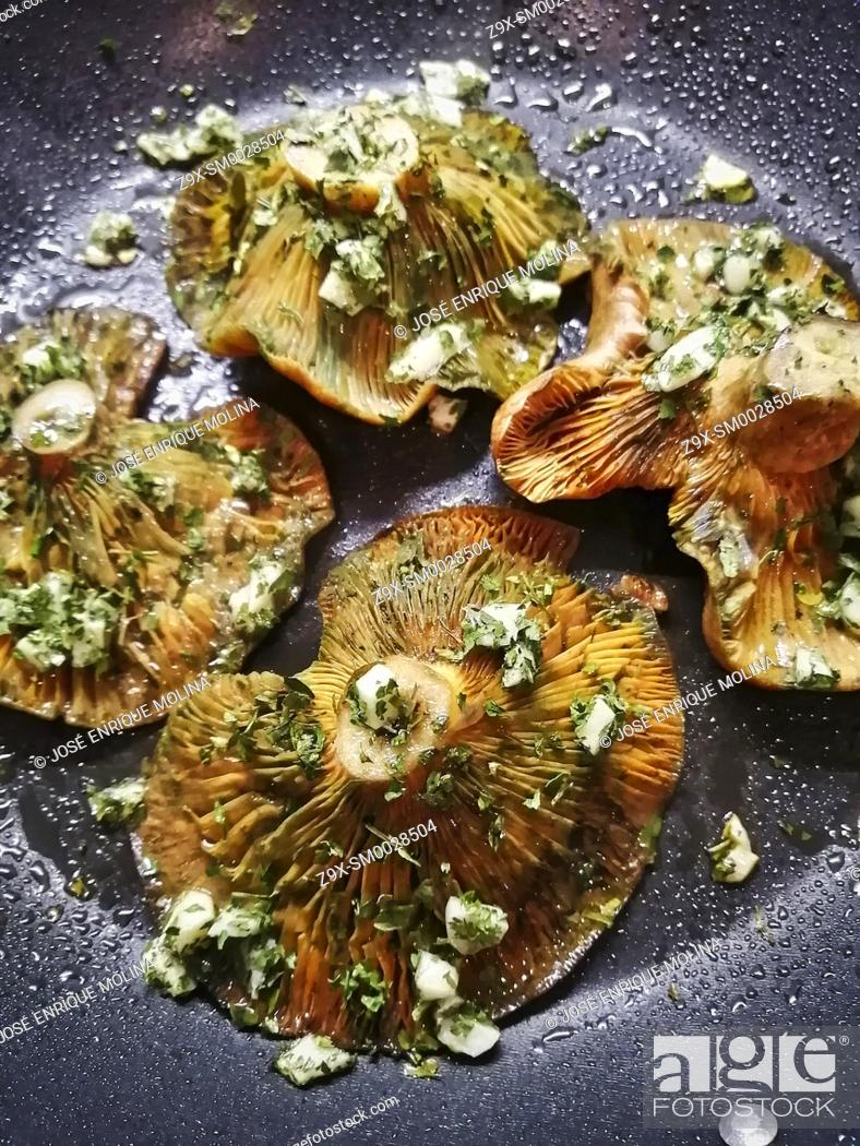 Stock Photo: Mediterranean cuisine, Grilled mushrooms, Lactarius deliciosus, traditional dishes, Barcelona, Spain.
