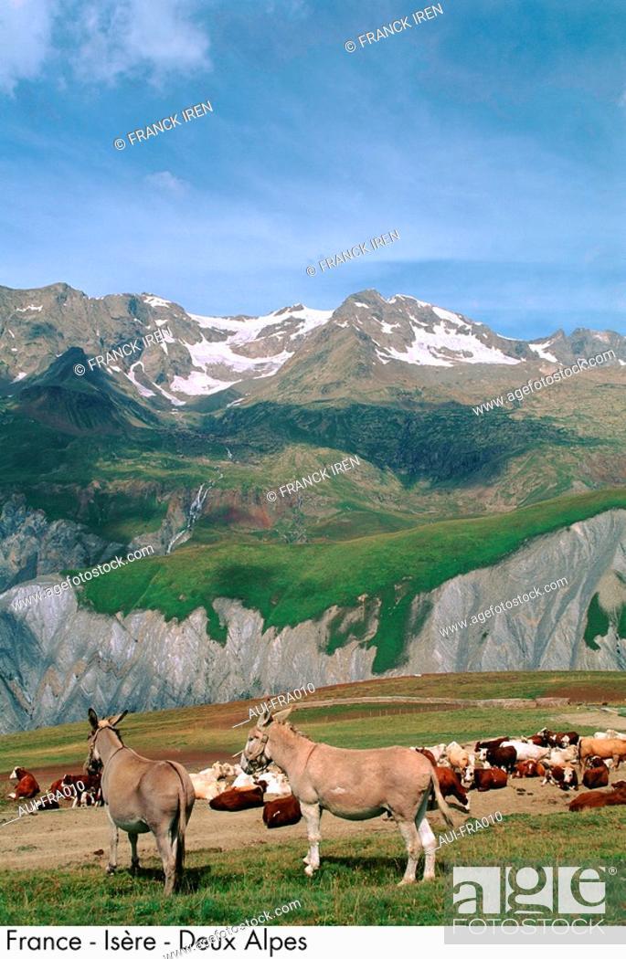 Stock Photo: France - Isere - Deux Alpes.