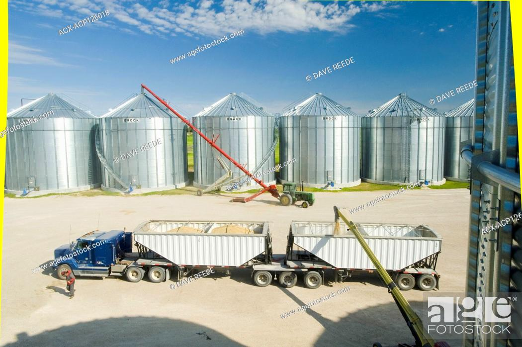 Stock Photo: a super B grain truck being loaded with barley from grain storage bins near St. Jean, Manitoba, Canada.