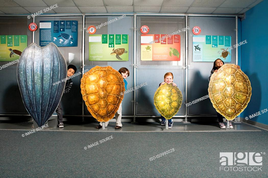 Stock Photo: Four friends standing behind sea turtle shells.