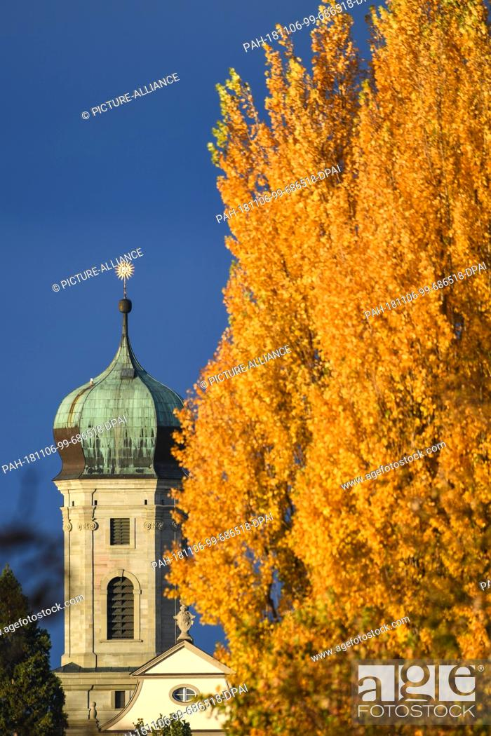 Stock Photo: 06 November 2018, Baden-Wuerttemberg, Friedrichshafen: One of the bell towers of the castle church can be seen behind autumn-coloured trees.