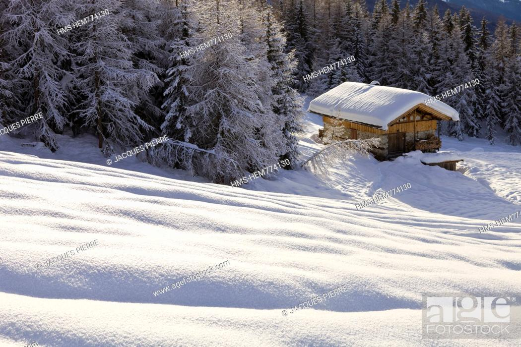 Stock Photo: France, Savoie, Les Arcs 1800, Massif de La Vanoise, high Tarentaise valley, chalet isolated in the forest.