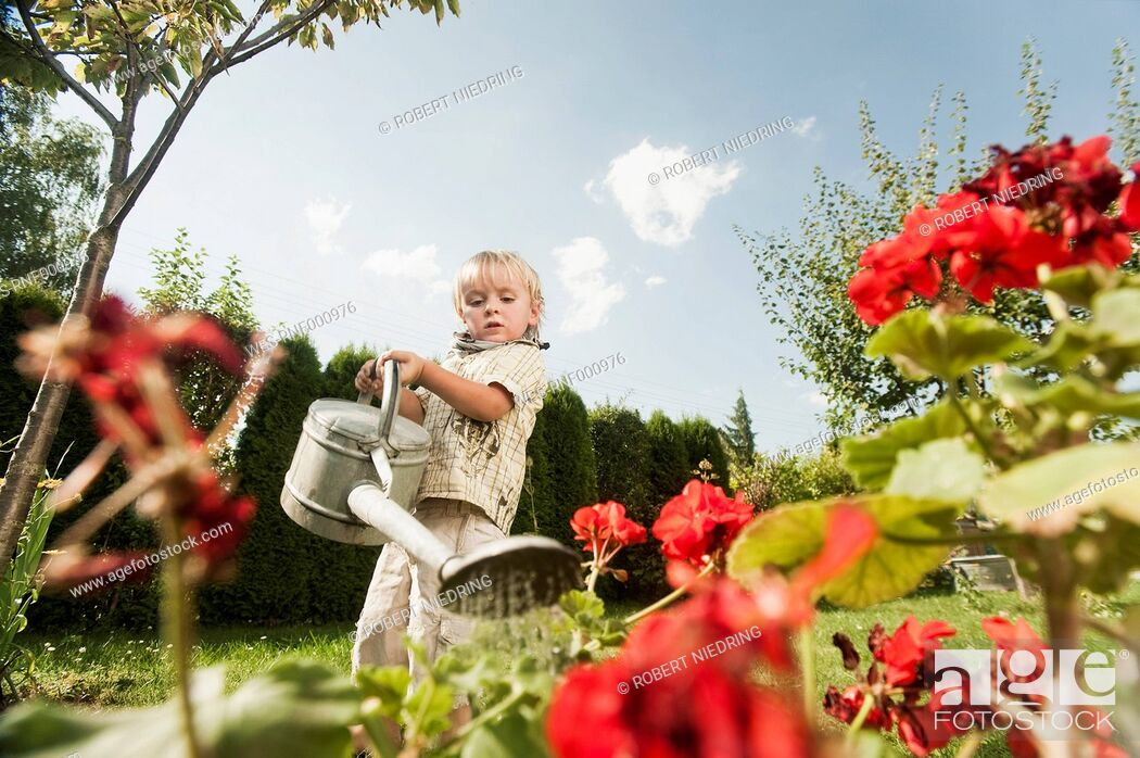 Photo de stock: Germany, Bavaria, Boy watering garden flowers.